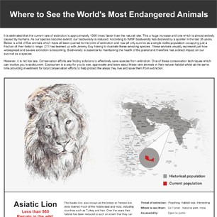 Where to Find the World's Most Endangered Animals Infographic